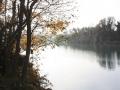 wetland5