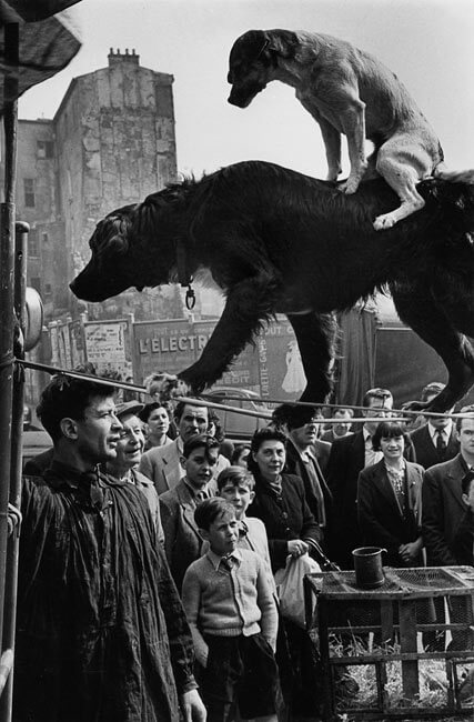 Rue Mouffetard, 1953 - Marc Riboud