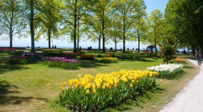 La fête des tulipes de Morges