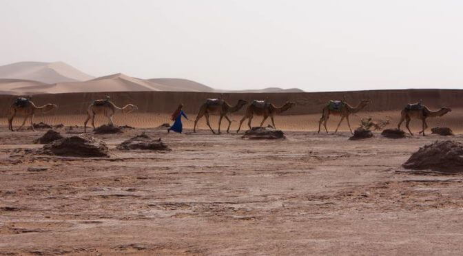 Circuit dans le désert marocain (2/3)